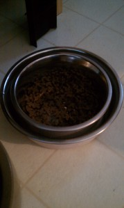 Hopefully ant-proof cat bowl
